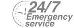 24/7 Emergency Service Pest Control in Staines-upon-Thames, Egham Hythe, TW18. Call Now! 020 8166 9746